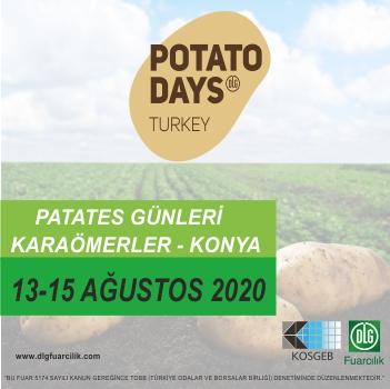 dlg 2 – potato