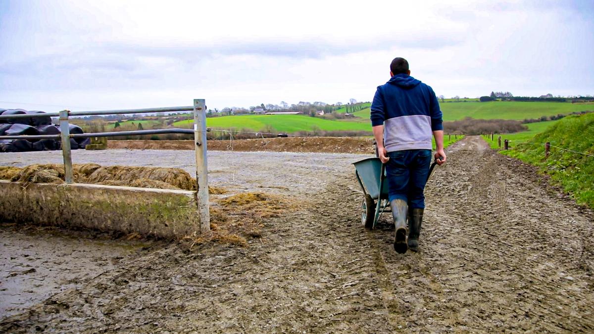 FS1E1-00_03_05-Young-Farmer-Yard-Agriland20